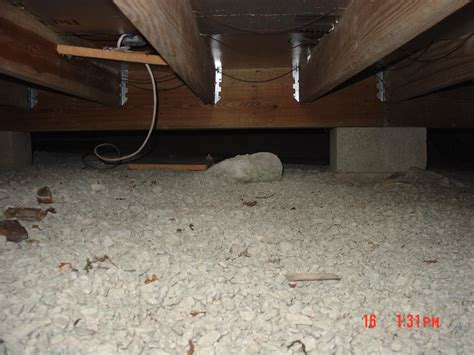 dryzone basement systems crawl space repair photo album