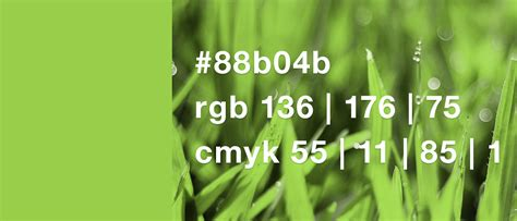 greenery code your designs and pantone s colour of the year greenery