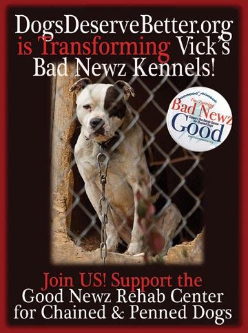 michael vick's 'bad newz kennels' now the 'good newz rehab