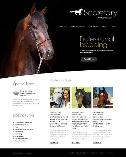 horse templates for photoshop horse website template 38835