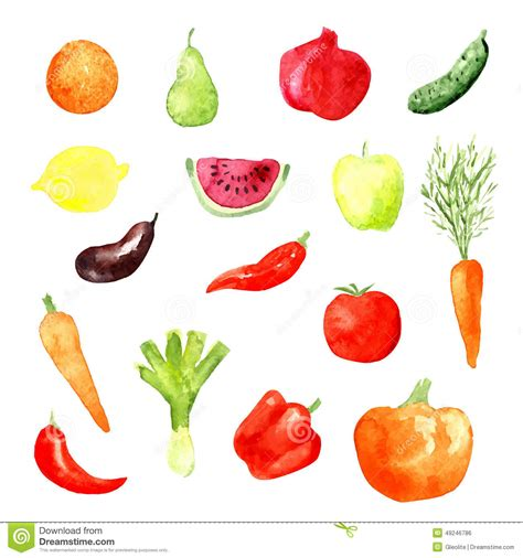 big y vegetables watercolor fruit and vegetable icons vector stock vector