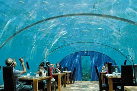 maldives ithaa underwater restaurant overwater villa ihtaa underwater restaurant at conrad maldives rangali island