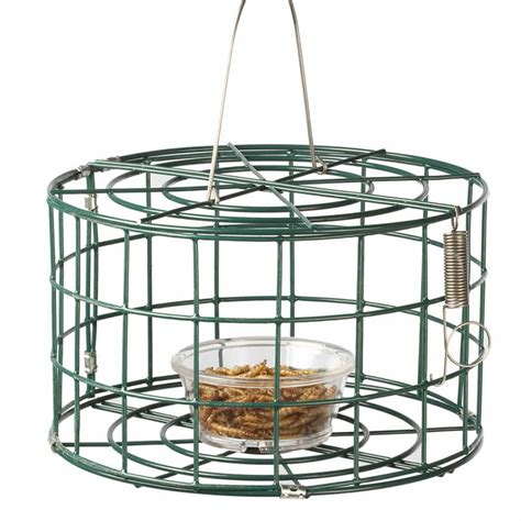 duncraft com duncraft 3083 mini bluebird cage bird feeder
