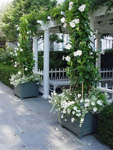 cottage white garden patios pinterest