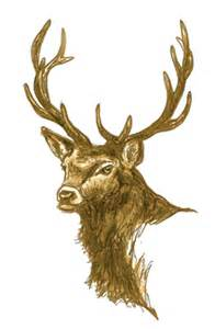 Artemis stag mythology and folklore of deer trees for life