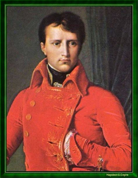 biographie de napoleon bonaparte napol 233 on bonaparte en 1803 portrait napoleon empire