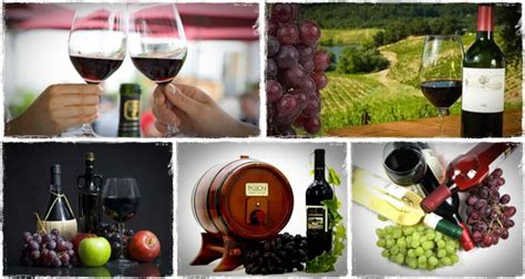 how to make wine driverlayer search engine
