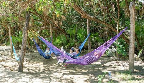 attach hammock to tree how to attach eno hammock to tree