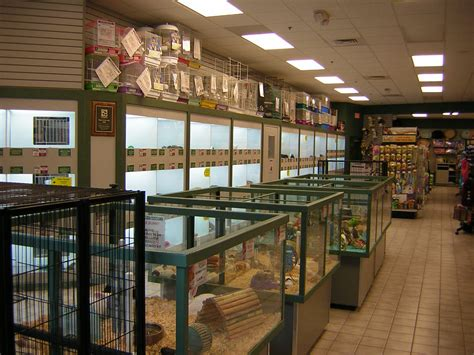petland strongsville strongsville oh business directory