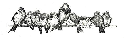 vintage illustration vintage bird clip art illustrations the graffical muse