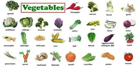 p word vegetables vocabulary vegetables words