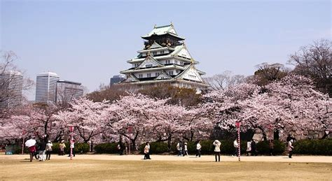 in japan there are 3 osaka travel guide