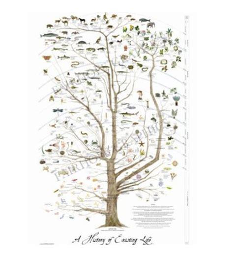 printable tree poster tree of life poster