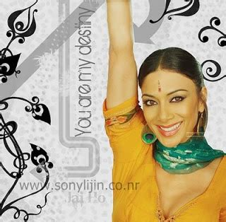 jai ho nicole scherzinger new malayalam hindi tamil mp3 songs download pussycat