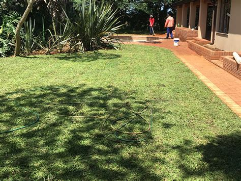 grass roots landscaping grass roots instant lawn landscaping specialists in durban