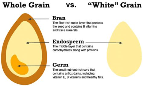 whole grains or refined grains why refined carbs are bad for you