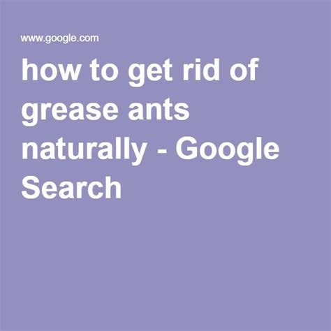 Get Rid Of Find Search 36 Best Amazing Ants Images On Ants Anatomy And Ant Species