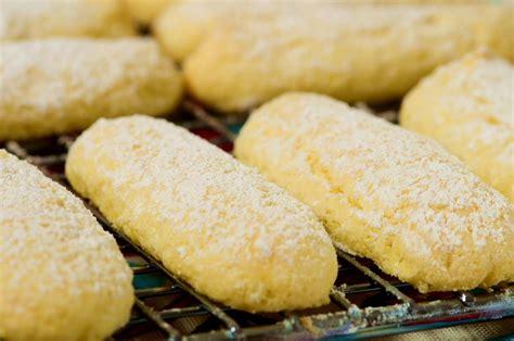 Finger Savoiardi Biscuit Biscuit For Tiramisu 200gr ladyfingers recipe joyofbaking recipe