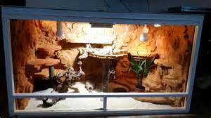bartagame terrarium beleuchtung terrarium eigenbau 2015 2016 f 252 r bartagame