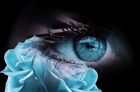 imagenes de ojos con flores im 225 genes de ojos gif imagui