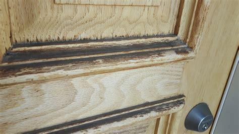 exterior oak door gel stain process paint talk