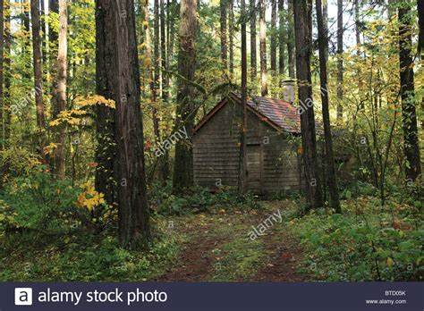 Cabin In The Woods by An Cabin In The Woods Stock Photo Royalty Free Image