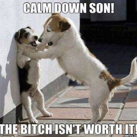 Calm Down And Meme - calm down meme face image memes at relatably com