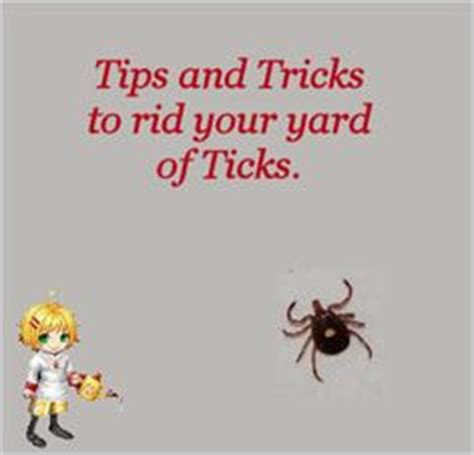 get rid of bugs in backyard how to identify bugs in the garden a smartphone app moms
