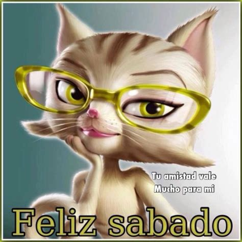 imagenes de feliz sabado con gatitos fel 237 z s 225 bado im 225 genes divertidas para compartir con