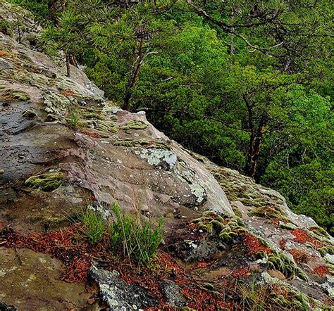 Landscape Rock Owensboro Ky Photo
