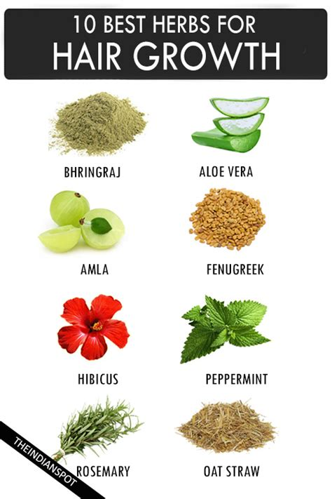 is sage and oatmeal good for bald spot in head to help hair grow is sage and oatmeal good for bald spot in head to help