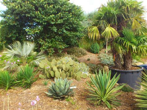 Les Plantes Succulentes by Les Plantes Succulentes Inspirations Desjardins