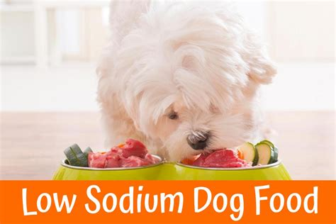 low sodium dogs review of the best low sodium food us bones