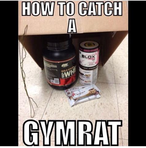 protein jokes whey puns