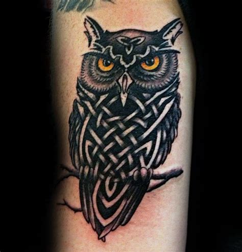 30 celtic owl tattoo designs for men knot ink ideas