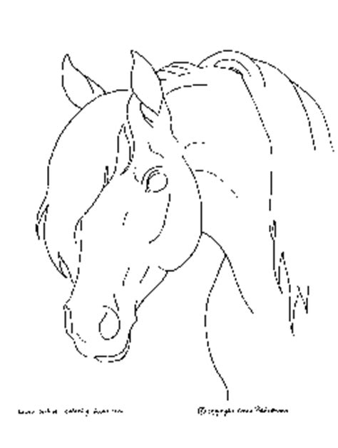 coloring pages of horses heads animal stronger quot quot coloring to print