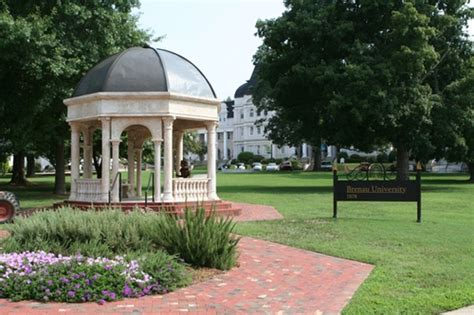 Brenau Mba Reviews by Top 50 Best Mba In Healthcare Management Degree