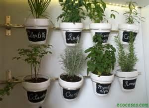 Otra buena idea es cultivar estas plantas directamente en la cocina si