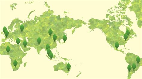 wallpaper green world green world map wallpaper 7308