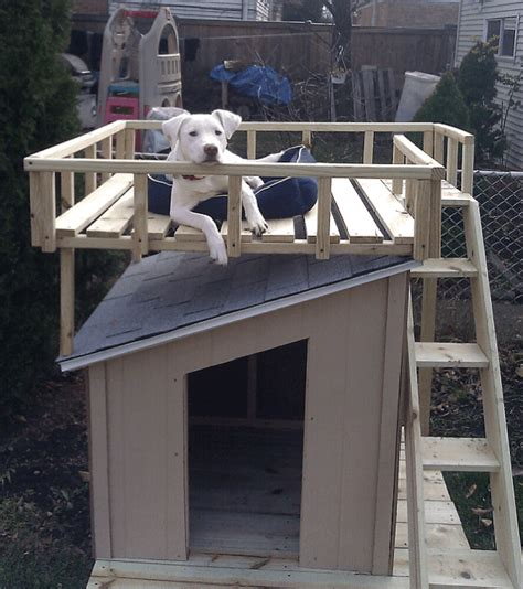 how to build a roof for a dog house 7 diy dog houses to shelter your furry friends make