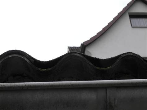 kosten garagendach sanieren bau de forum dach 16471 garagendach