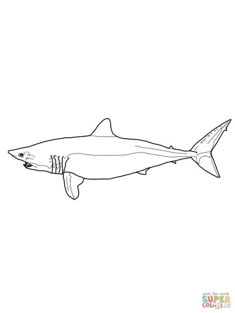 mako template mako shark coloring page free printable coloring pages