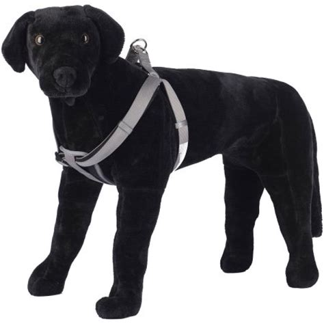 comfort harness for large dogs pet chion large size comfort neoprene cushion step in