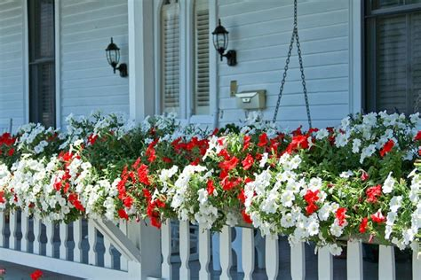 deck railing window boxes porch railing window boxes container gardening