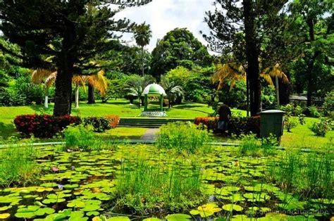 St Vincent Botanical Gardens St Vincent Botanical Gardens Panoramio Photo Of St Vincent Karibik Botanical Garden Of