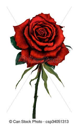 red rose digital painting. red rose flower original