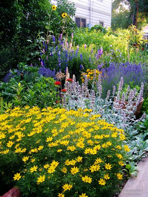 full sun flower beds flower bed ideas for full sun