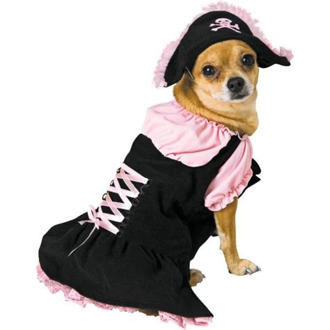 pirate puppy pink pirate costume