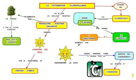 la conservazione degli alimenti riassunto mappa concettuale fotosintesi clorofilliana