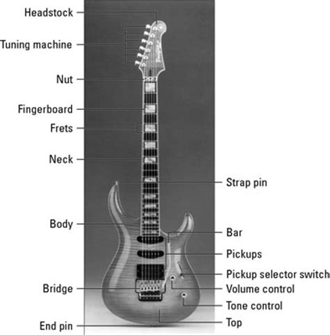 What Is The Knob On A Called by Parts Of An Electric Guitar Dummies